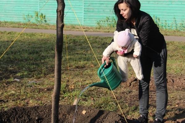 В Зеленограде посадили первые именные деревья в честь новорожденных детей